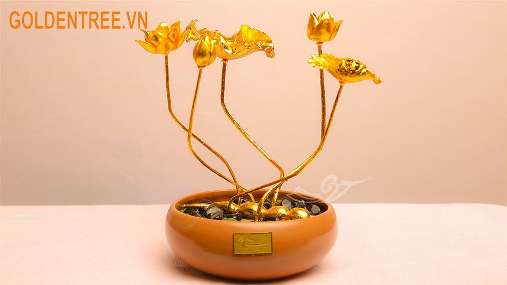 Cây hoa sen mạ vàng 24K