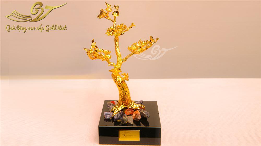 cây hoa đào mạ vàng 2
