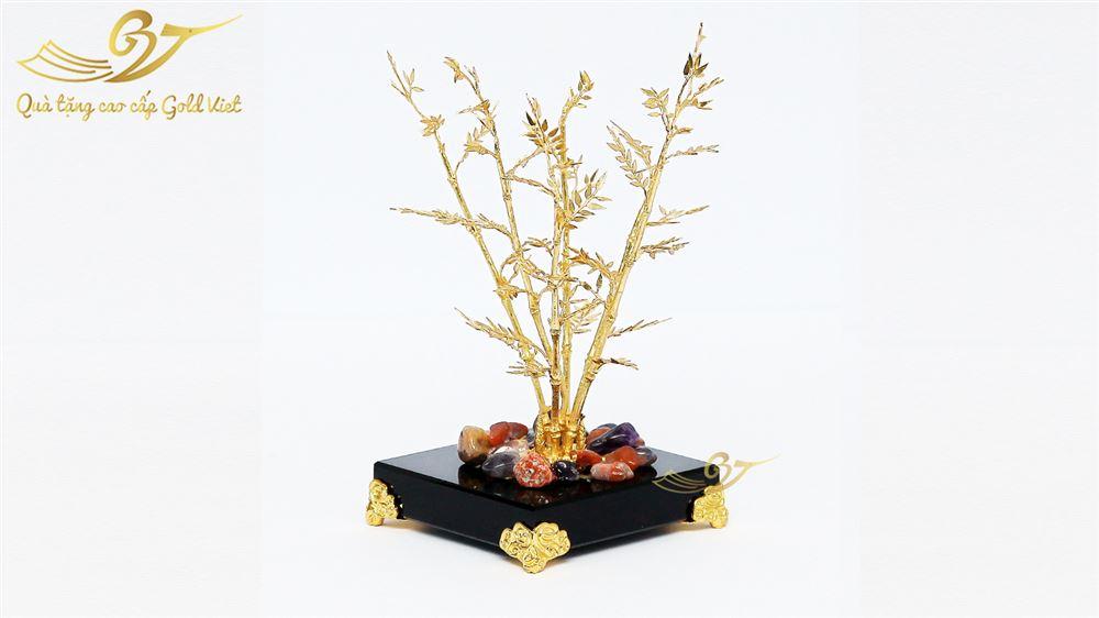 cây trúc vàng 2